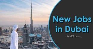 New Jobs in Dubai