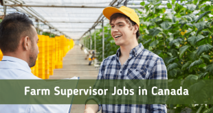 Farm Supervisor Jobs in Canada 2021